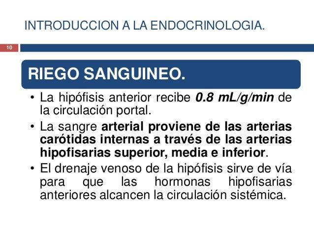 INTRODUCCION A LA ENDOCRINOLOGIA.RIEGO SANGUINEO.• La hipófisis anterior recibe 0.8 mL/g/min dela circulación portal.• La ...