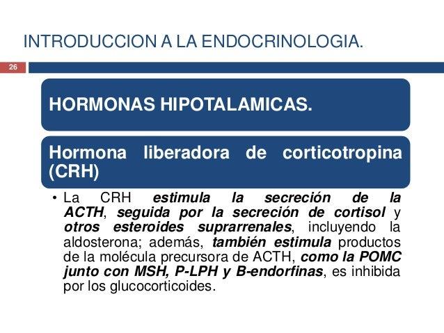 INTRODUCCION A LA ENDOCRINOLOGIA.HORMONASHIPOTALAMICAS.• Hormona liberadorade corticotropina(CRH)27
