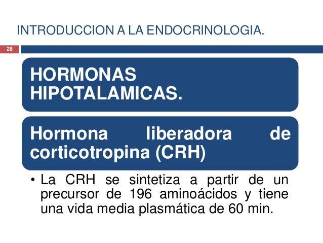 INTRODUCCION A LA ENDOCRINOLOGIA.HORMONAS HIPOTALAMICAS.Hormona liberadora de corticotropina(CRH)• Tiene efectos neurales,...