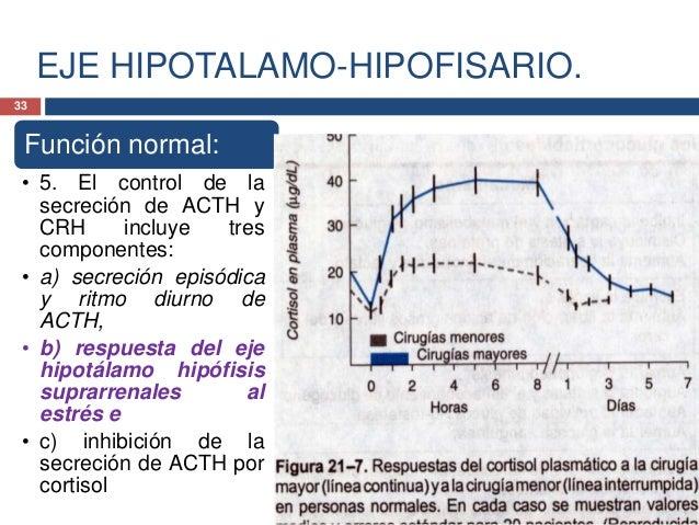 EJE HIPOTALAMO-HIPOFISARIO.Función normal:• 5. El control de lasecreción de ACTH yCRH incluye trescomponentes:• a) secreci...