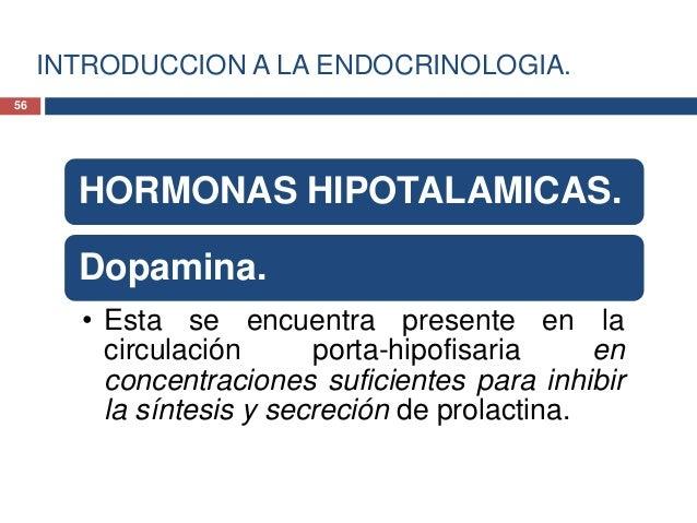 INTRODUCCION A LA ENDOCRINOLOGIA.HORMONAS HIPOTALAMICAS.HORMONAS LIBERADORAS DEPROLACTINA• La TRH es el principal estímulo...