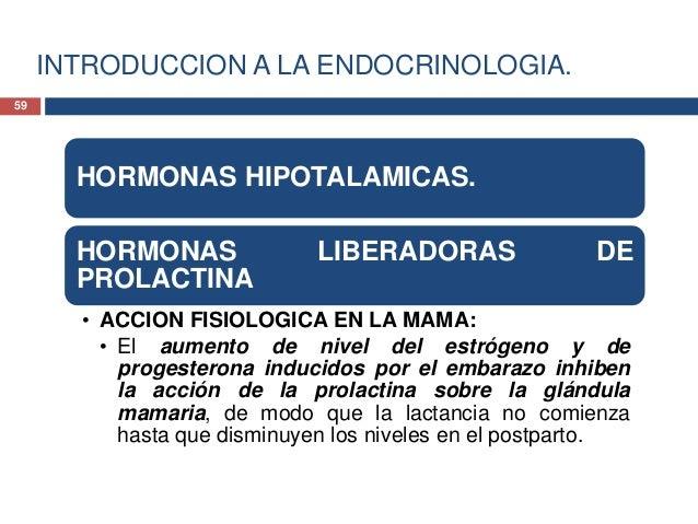 INTRODUCCION A LA ENDOCRINOLOGIA.HORMONAS HIPOTALAMICAS.HORMONAS LIBERADORAS DEPROLACTINA• ACCION FISIOLOGICA EN LAS GONAD...