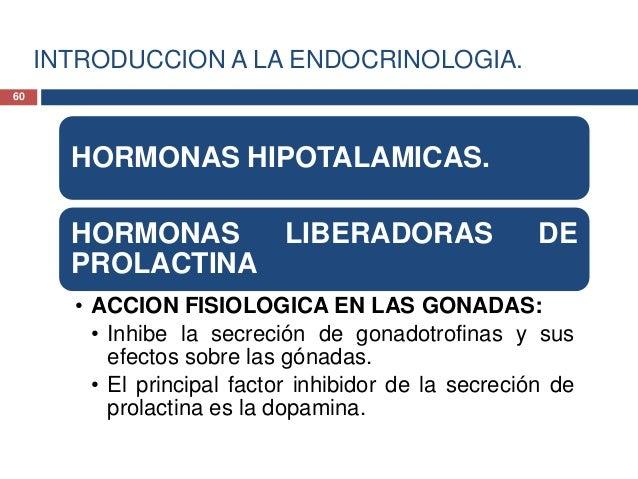 INTRODUCCION A LA ENDOCRINOLOGIA.HORMONASHIPOTALAMICAS. HORMONASLIBERADORASDEPROLACTINA61