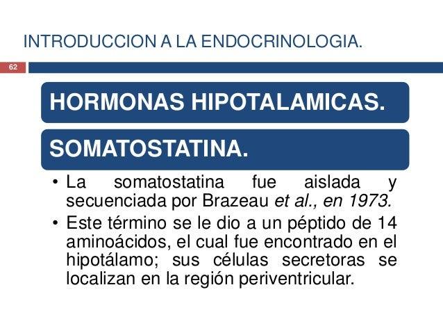 INTRODUCCION A LA ENDOCRINOLOGIA.HORMONAS HIPOTALAMICAS.SOMATOSTATINA.• Existen dos somatostatinas, de 14 y 28aminoacidos,...