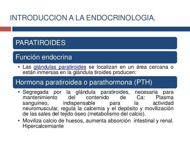 Timo:• El timo es una glándula que se necesita en los primeros añospara tener una función inmune normal.• La glándula del ...