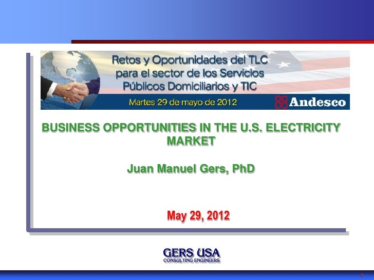 BUSINESS OPPORTUNITIES IN THE U.S. ELECTRICITY                 MARKET             Juan Manuel Gers, PhD                   ...