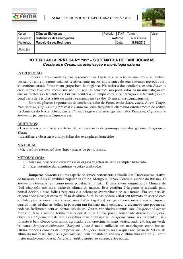 Curso: Ciências Biológicas Período: 3º/4º Turma: Visto: Disciplina: Sistemática de Fanerógamas Noturno Aula Prática Profes...