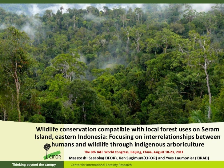 Wildlife conservation compatible with local forest uses on SeramIsland, eastern Indonesia: Focusing on interrelationships ...