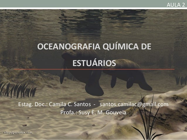 AULA 2       OCEANOGRAFIA QUÍMICA DE                    ESTUÁRIOSEstag. Doc.: Camila C. Santos - santos.camilac@gmail.com ...