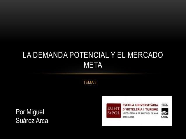 LA DEMANDA POTENCIAL Y EL MERCADO                META                TEMA 3Por MiguelSuárez Arca