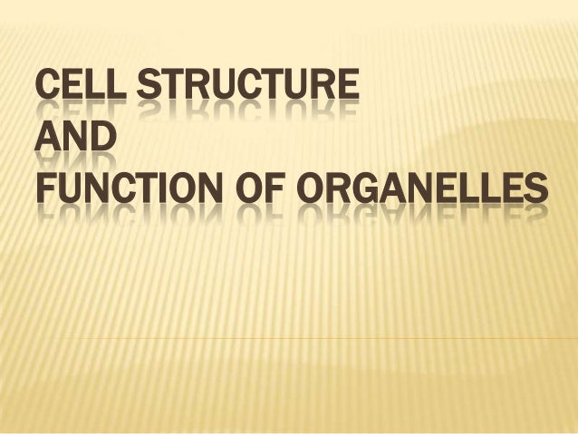 CELL STRUCTUREANDFUNCTION OF ORGANELLES