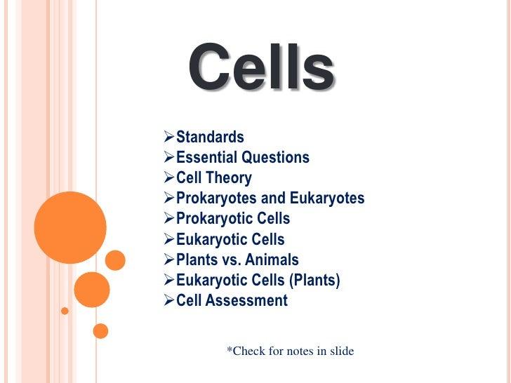 #2  ledesma cells