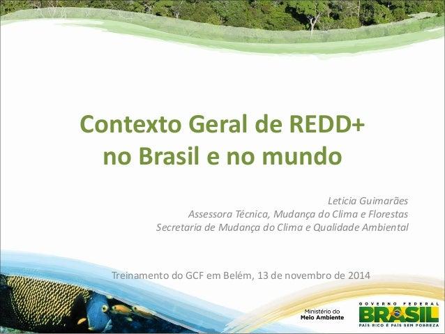 Contexto Geral de REDD+ no Brasil e no mundo  Leticia Guimarães  Assessora Técnica, Mudança do Clima e Florestas  Secretar...