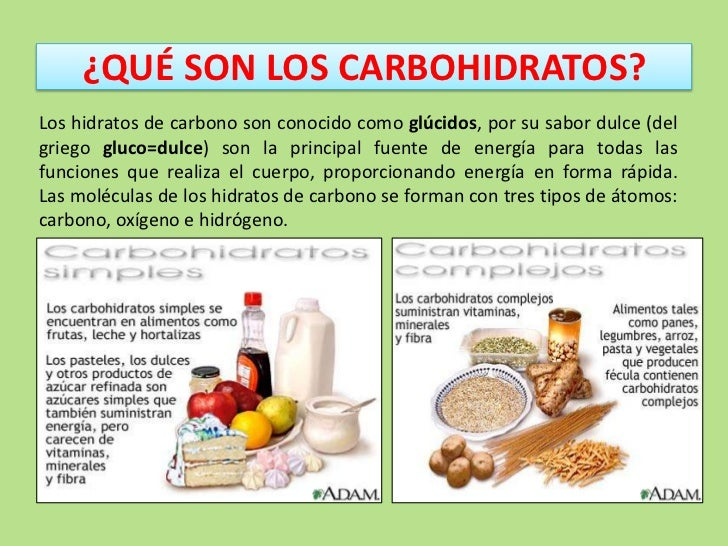 Los carbohidratos for Que son los comedores escolares
