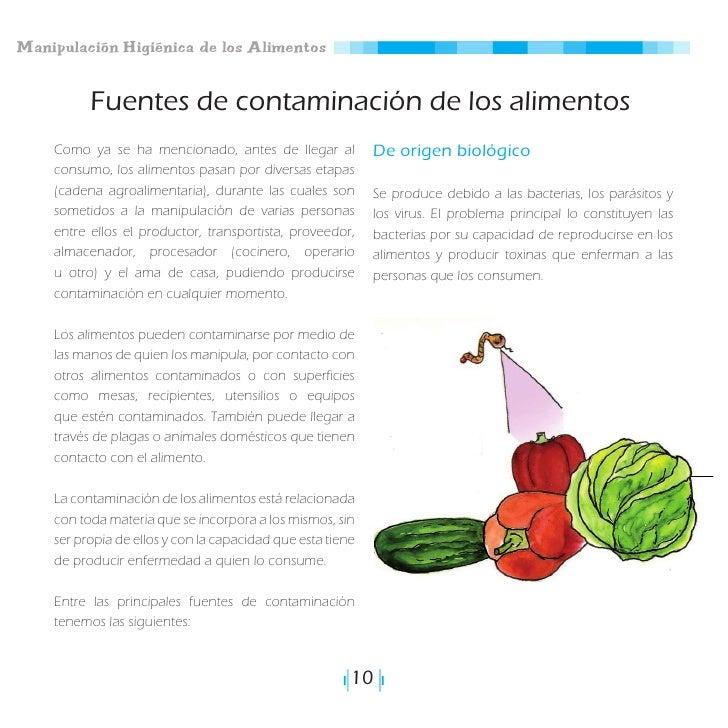 2 manipulaci n higi nica de alimentos - Fuentes de contaminacion de los alimentos ...