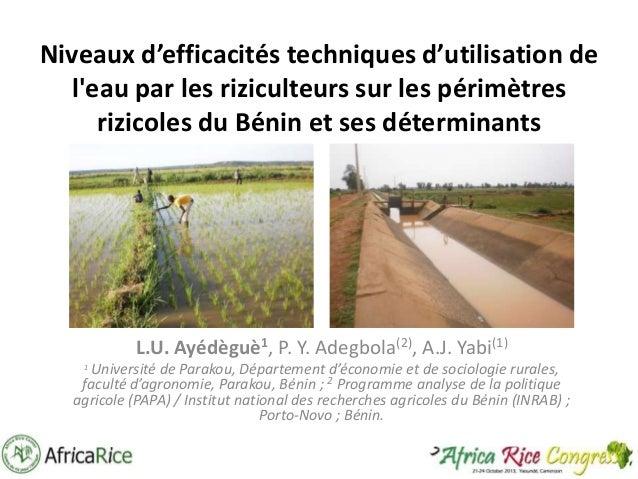 Niveaux d'efficacités techniques d'utilisation de l'eau par les riziculteurs sur les périmètres rizicoles du Bénin et ses ...