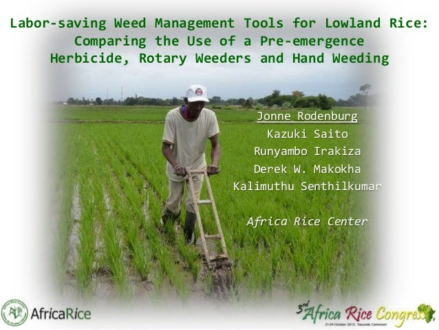 Labor-saving Weed Management Tools for Lowland Rice: Comparing the Use of a Pre-emergence Herbicide, Rotary Weeders and Ha...