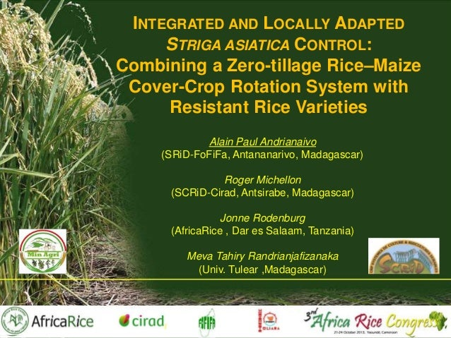 INTEGRATED AND LOCALLY ADAPTED STRIGA ASIATICA CONTROL: Combining a Zero-tillage Rice–Maize Cover-Crop Rotation System wit...