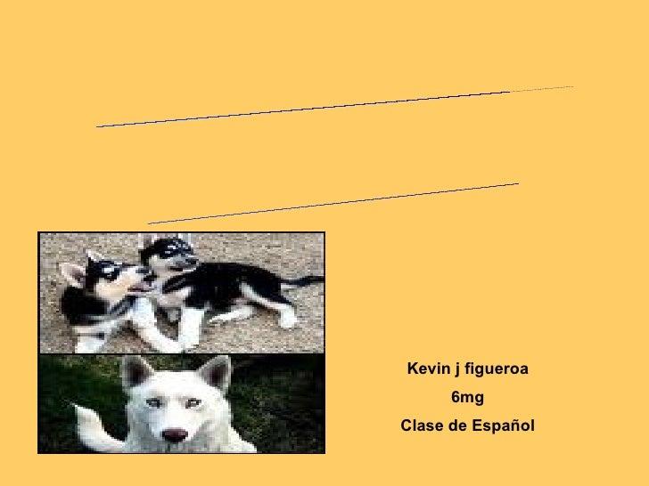 Kevin j figueroa 6mg Clase de Español POEMARIO ELECTRÓNICO MI PERRO
