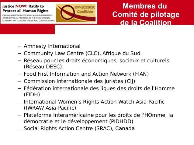 Membres du  Comité de pilotage  de la Coalition  – Amnesty International  – Community Law Centre (CLC), Afrique du Sud  – ...