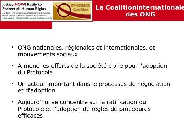 La Coalitioninternationale  des ONG  • ONG nationales, régionales et internationales, et  mouvements sociaux  • A mené les...