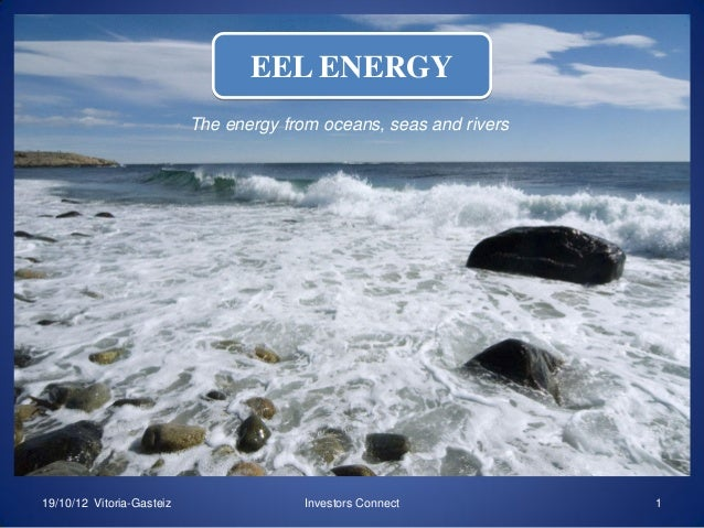 EEL ENERGY The energy from oceans, seas and rivers  EEL ENERGY  19/10/12 Vitoria-Gasteiz  Investors Connect  1