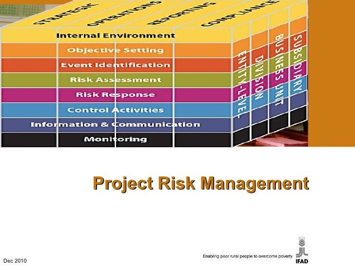 Project Risk Management Dec 2010