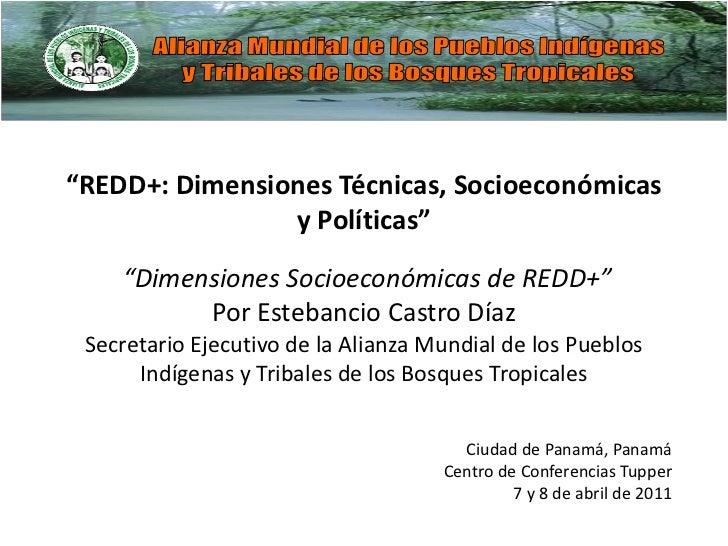 """""""REDD+: Dimensiones Técnicas, Socioeconómicas                y Políticas""""    """"Dimensiones Socioeconómicas de REDD+""""       ..."""