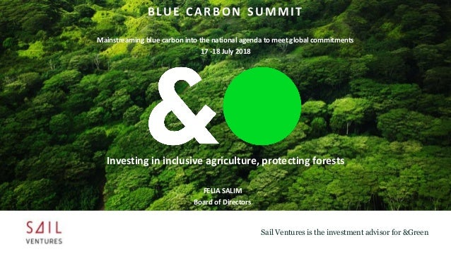 Sail Ventures is the investment advisor for &Green FELIA SALIM Board of Directors BLUE CARBON SUMMIT Mainstreaming blue ca...