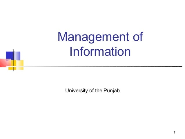 Management of Information University of the Punjab                            1