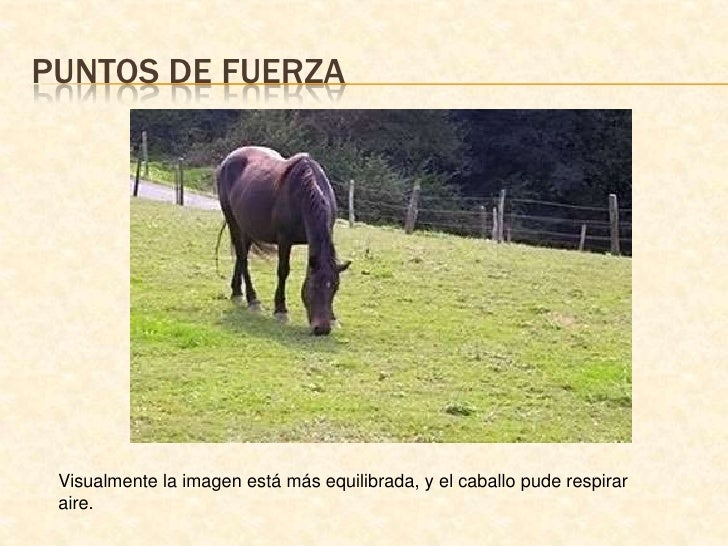 Puntos de fuerza<br />Visualmente la imagen está más equilibrada, y el caballo pude respirar aire.<br />