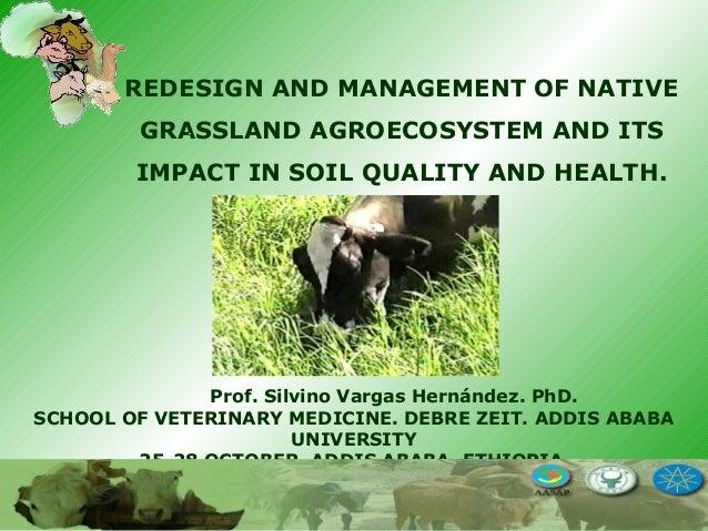 Prof. Silvino Vargas Hernández. PhD. SCHOOL OF VETERINARY MEDICINE. DEBRE ZEIT. ADDIS ABABA UNIVERSITY 25-28 OCTOBER, ADDI...