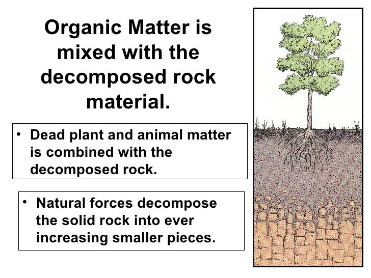 2 soil formation 1 for Nature and composition of soil