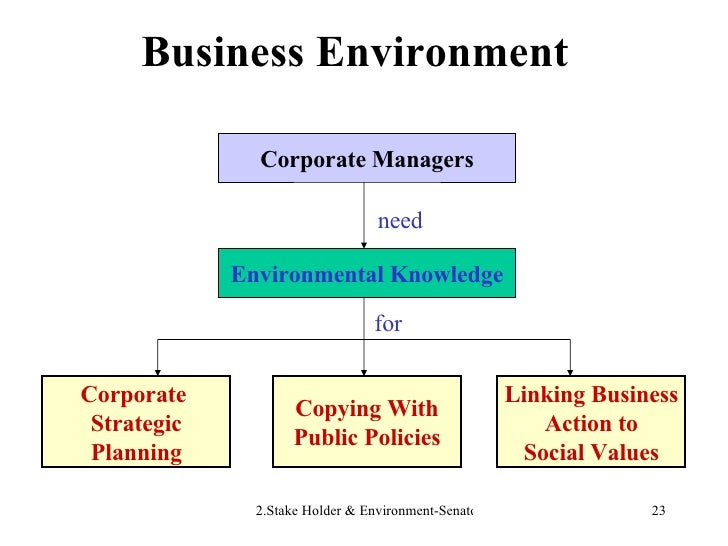 Business Environment Corporate Managers Environmental Knowledge Corporate  Strategic Planning Copying With Public Policies...