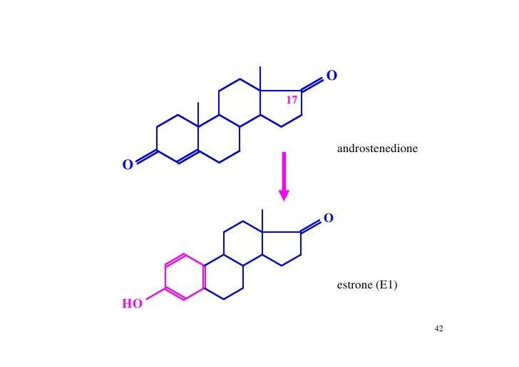 urine hydroxysteroids