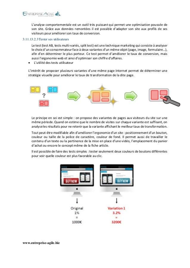 www.entreprise-agile.biz  L'analyse comportementale est un outil très puissant qui permet une optimisation poussée de son ...