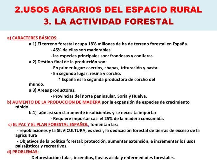 2.USOS AGRARIOS DEL ESPACIO RURAL 3. LA ACTIVIDAD FORESTAL <ul><li>a)  CARACTERES BÁSICOS: </li></ul><ul><li>a.1) El terre...