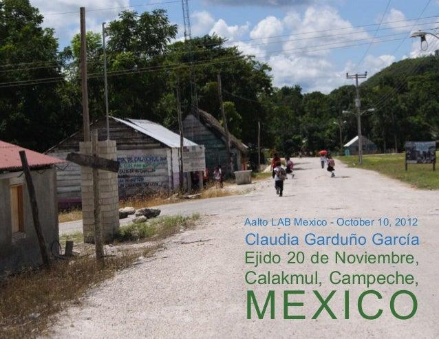 20 de noviembre for Alberca 20 de noviembre campeche