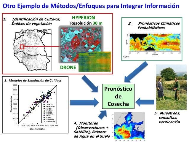 Sistema nacional de informaci n agropecuaria en uruguay for Modelo demanda clausula suelo