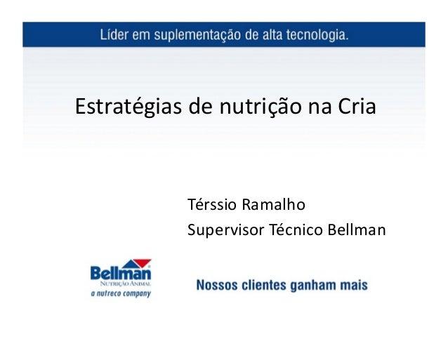Estratégias de nutrição na Cria                  Térssio Ramalho                  Supervisor Técnico Bel...