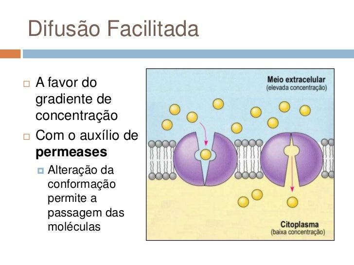 Difusão Facilitada   A favor do    gradiente de    concentração   Com o auxílio de    permeases       Alteração da     ...