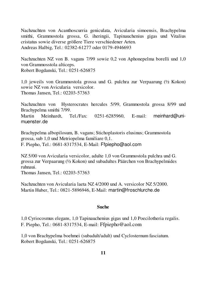 Alle Arten von Seidenspinnen (Nephila spec.), Phoneutria spec., Jagdspinnen, Poecilotheria metallica, P. smithi, P. subfus...