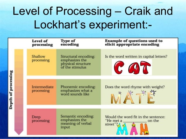 craik and lockhart a theory of the levels of processing and memory Get an answer for 'compare the 'multi-store model' of memory and the 'levels of processing model' of memory  by craik and lockhart as  enotescom will help you.