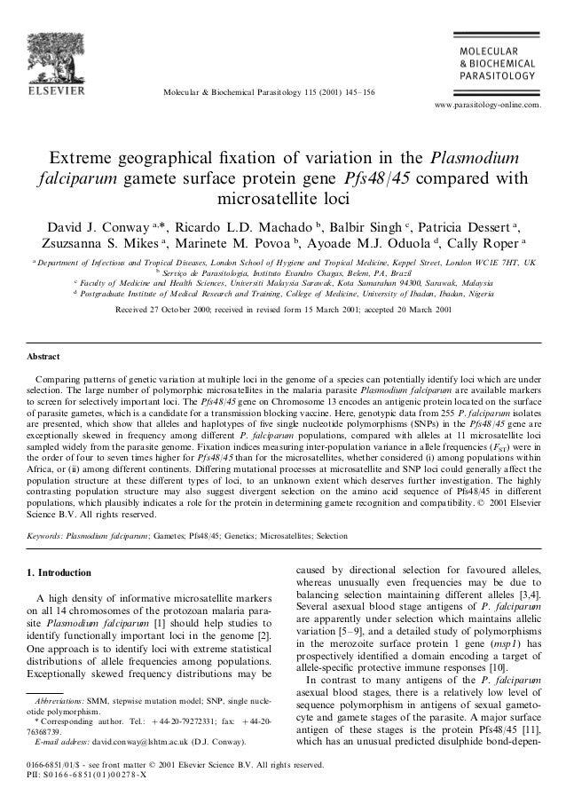 Molecular & Biochemical Parasitology 115 (2001) 145– 156                                                                  ...