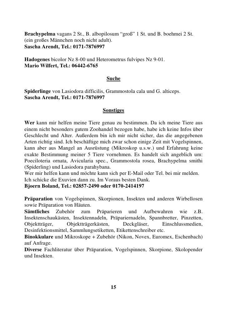 """Brachypelma vagans 2 St., B. albopilosum """"groß"""" 1 St. und B. boehmei 2 St. (ein großes Männchen noch nicht adult). Sascha ..."""