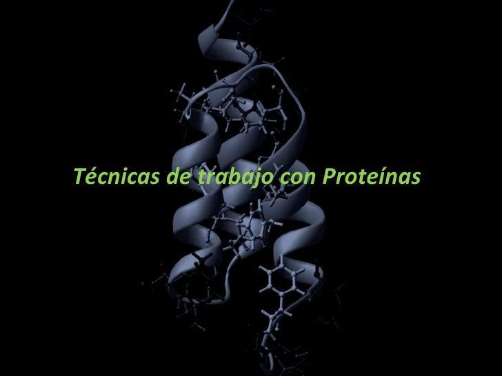 Técnicas de trabajo con Proteínas