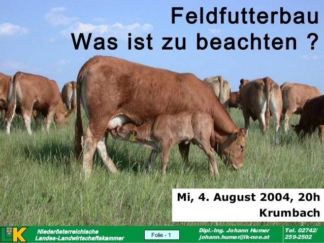 Feldfutterbau Was ist zu beachten ?  Mi, 4. August 2004, 20h Krumbach Niederösterreichische Landes-Landwirtschaftskammer v...