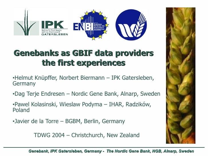 Genebanks as GBIF data providers the first experiences <ul><li>Helmut Knüpffer, Norbert Biermann – IPK Gatersleben, German...