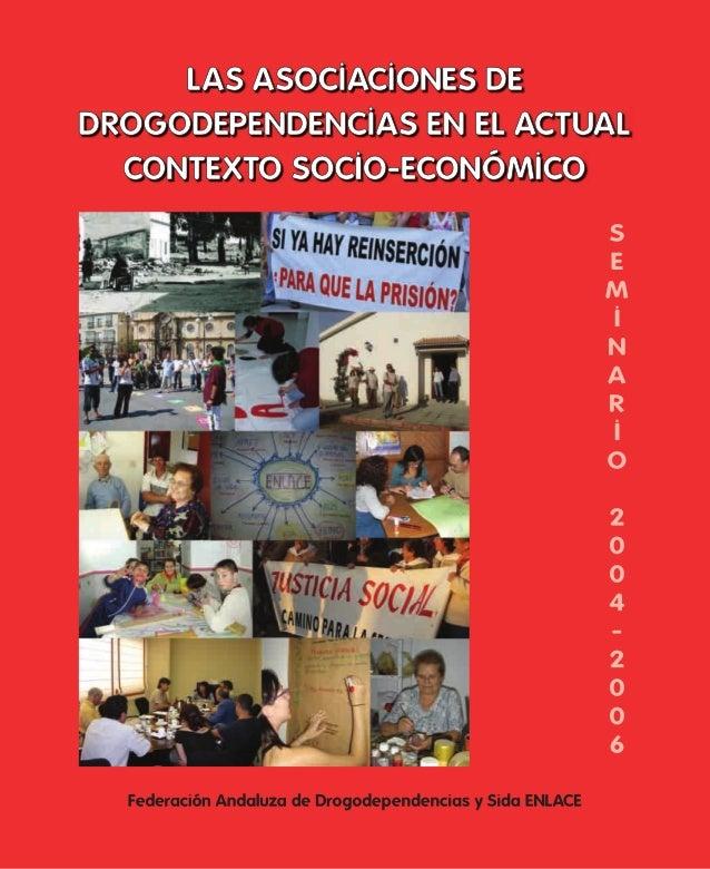 Seminario de Estudio 2004-2006 Las asociaciones de drogodependencias en el actual contexto socio-económico Federación Anda...