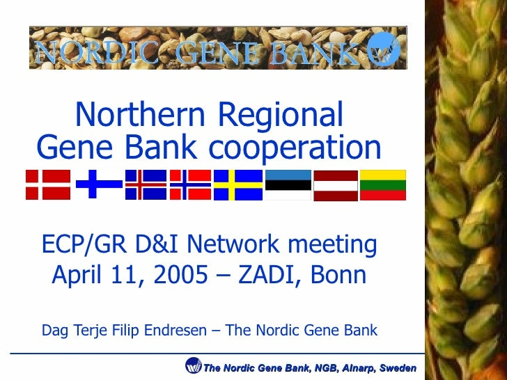 Northern Regional Gene Bank cooperation ECP/GR D&I Network meeting April 11, 2005 – ZADI, Bonn Dag Terje Filip Endresen – ...